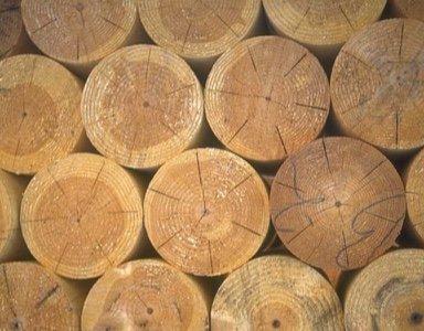 rondins bois